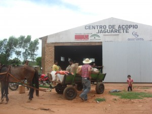 Centro de acopio de granos